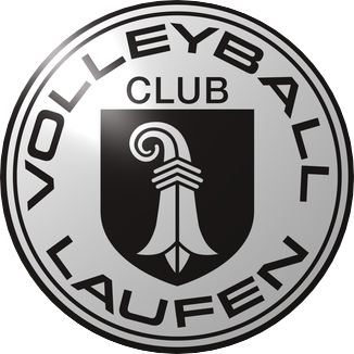 Stedtli Beach Volleyball Turnier Logo